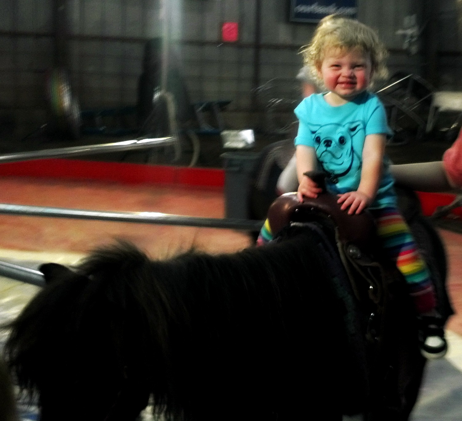 riding-pony-at-circus | tolmema